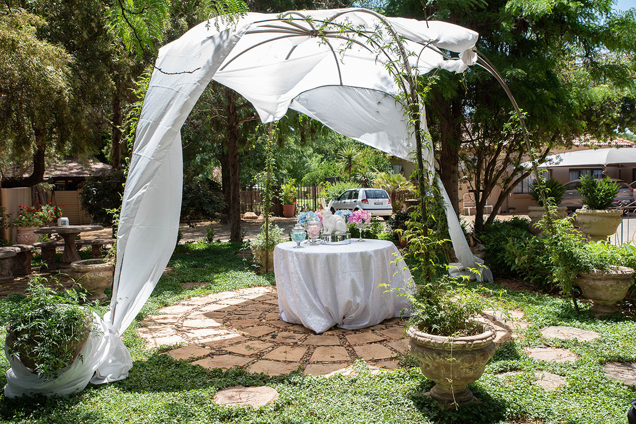Gender reveal event photography its a boy Tuscan rose photos by Mudboots Photoggraphy in Bleomfontein pink or blue