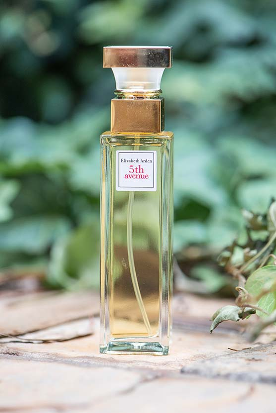 perfume elizabeth arden 5th ave Wedding Photos by Mudboots Photography at Leopard and Lace in Bloemfontein