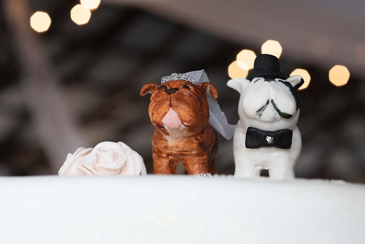wedding cake with american bullie as cake topper by photo by mudboots photography and film
