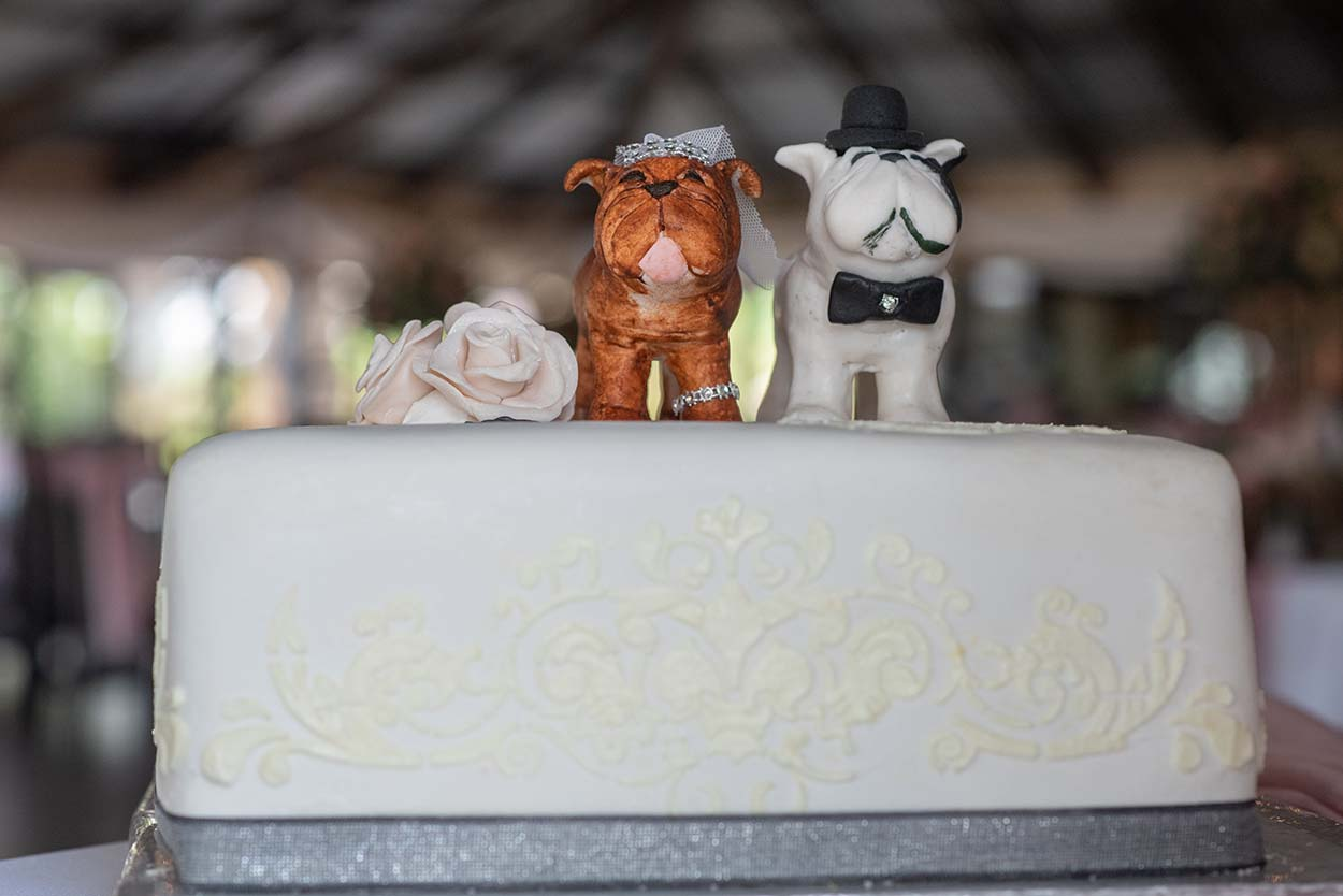 american bullie as cake toppers